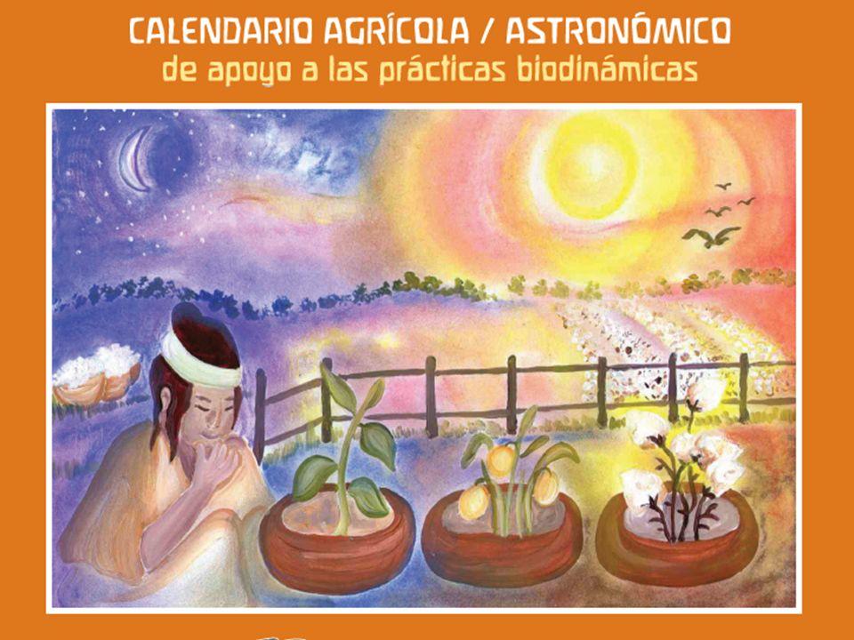 OBSERVACIÓN DE LOS RITMOS CÓSMICOS En su sentido más general Cosmos es un sistema ordenado o armonioso.