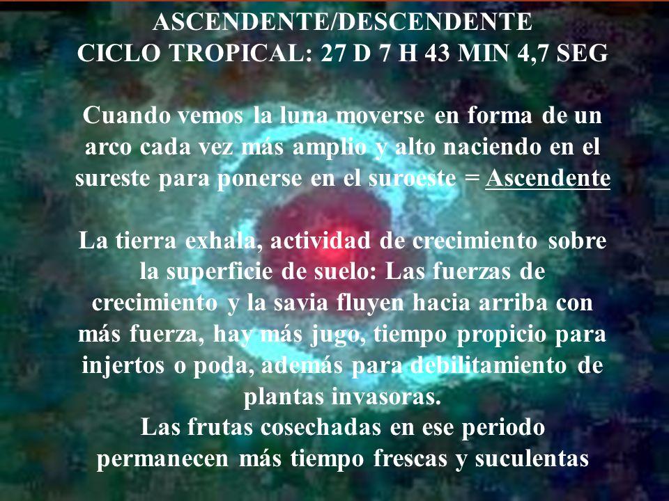 ASCENDENTE/DESCENDENTE CICLO TROPICAL: 27 D 7 H 43 MIN 4,7 SEG Cuando vemos la luna moverse en forma de un arco cada vez más amplio y alto naciendo en