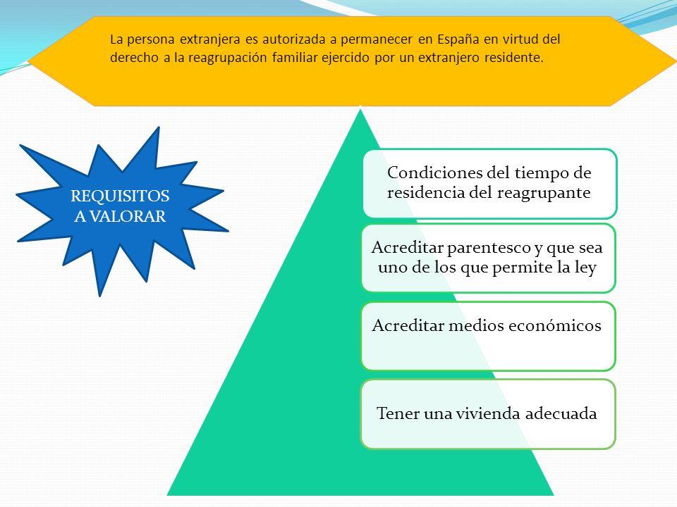 La persona extranjera es autorizada a permanecer en España en virtud del derecho a la reagrupación familiar ejercido por un extranjero residente. Cond