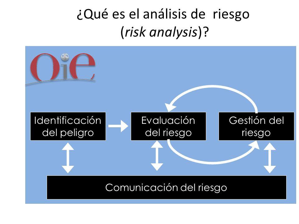 ¿Qué es el análisis de riesgo (risk analysis)? Identificación del peligro Evaluación del riesgo Gestión del riesgo Comunicación del riesgo