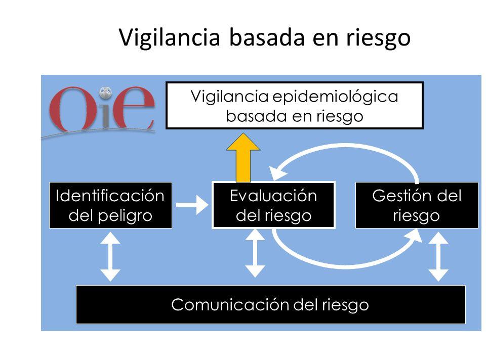 Vigilancia basada en riesgo Identificación del peligro Evaluación del riesgo Gestión del riesgo Comunicación del riesgo Vigilancia epidemiológica basa