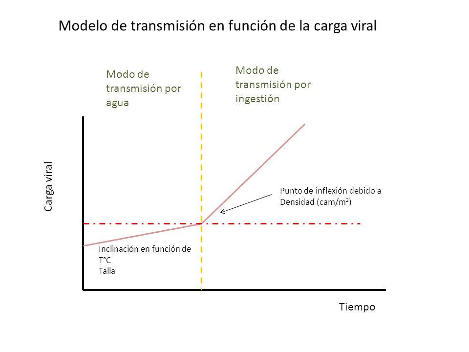 Carga viral Tiempo Modo de transmisión por agua Modo de transmisión por ingestión Inclinación en función de T°C Talla Punto de inflexión debido a Dens