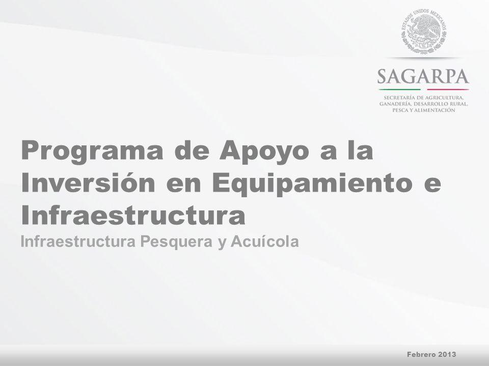 Programa de Apoyo a la Inversión en Equipamiento e Infraestructura Infraestructura Pesquera y Acuícola Febrero 2013