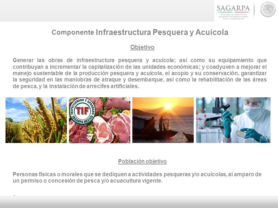 Componente Infraestructura Pesquera y Acuícola Objetivo Generar las obras de infraestructura pesquera y acuícola; así como su equipamiento que contrib