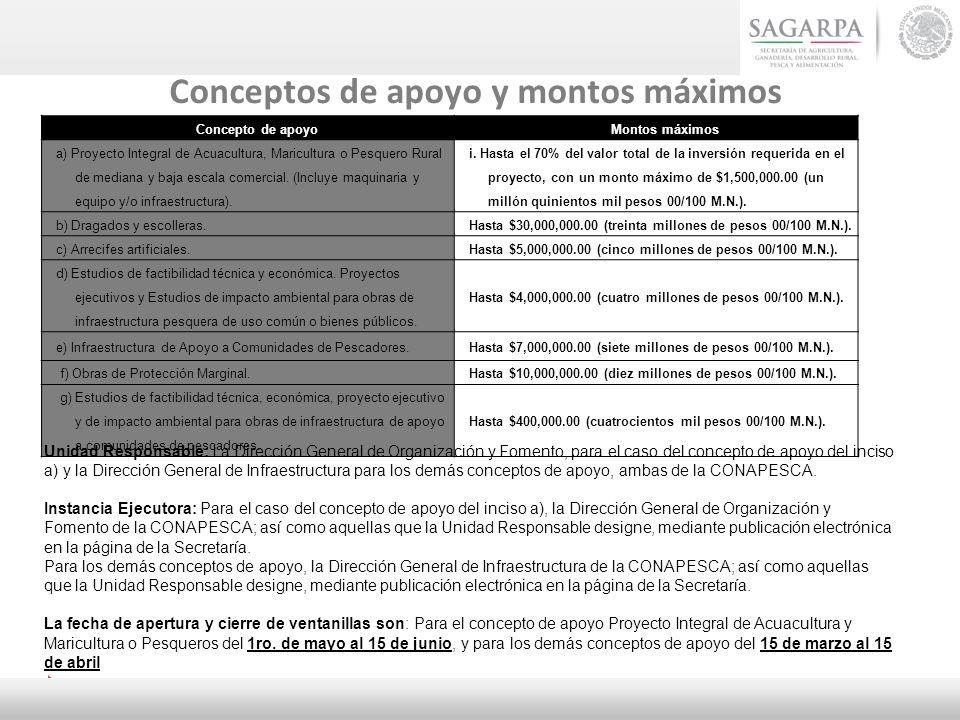 Conceptos de apoyo y montos máximos Concepto de apoyoMontos máximos a) Proyecto Integral de Acuacultura, Maricultura o Pesquero Rural de mediana y baj