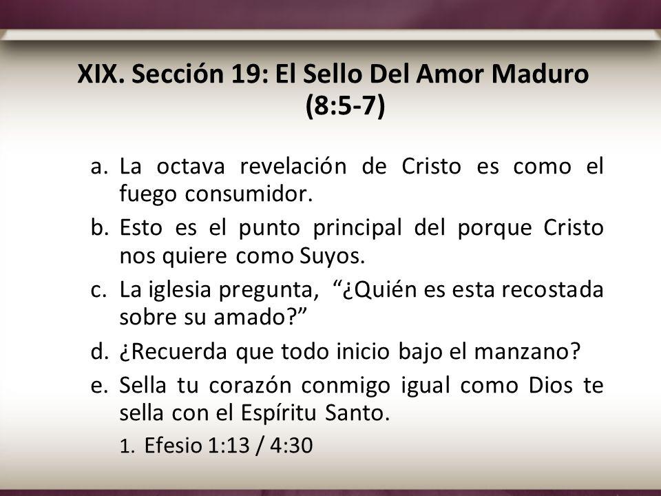 XIX. Sección 19: El Sello Del Amor Maduro (8:5-7) a.La octava revelación de Cristo es como el fuego consumidor. b.Esto es el punto principal del porqu