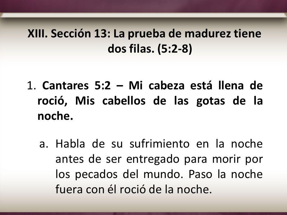 XIII. Sección 13: La prueba de madurez tiene dos filas. (5:2-8) 1. Cantares 5:2 – Mi cabeza está llena de roció, Mis cabellos de las gotas de la noche