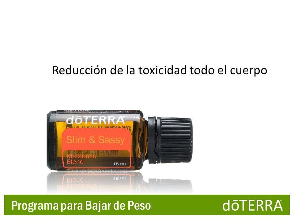 Reducción de la toxicidad todo el cuerpo Programa para Bajar de Peso