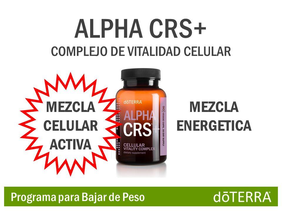 ALPHA CRS+ COMPLEJO DE VITALIDAD CELULAR MEZCLA CELULAR ACTIVA MEZCLA ENERGETICA Programa para Bajar de Peso