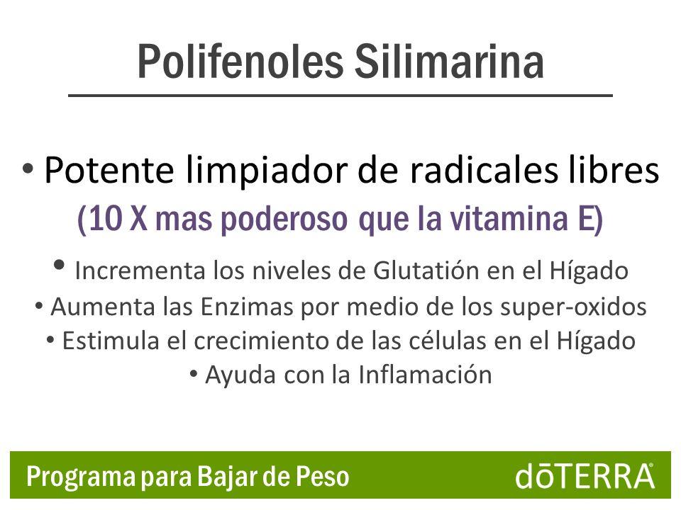 Polifenoles Silimarina Potente limpiador de radicales libres (10 X mas poderoso que la vitamina E) Incrementa los niveles de Glutatión en el Hígado Au