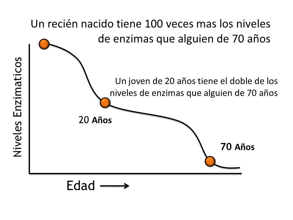 Edad Niveles Enzimaticos Un recién nacido tiene 100 veces mas los niveles de enzimas que alguien de 70 años Un joven de 20 años tiene el doble de los