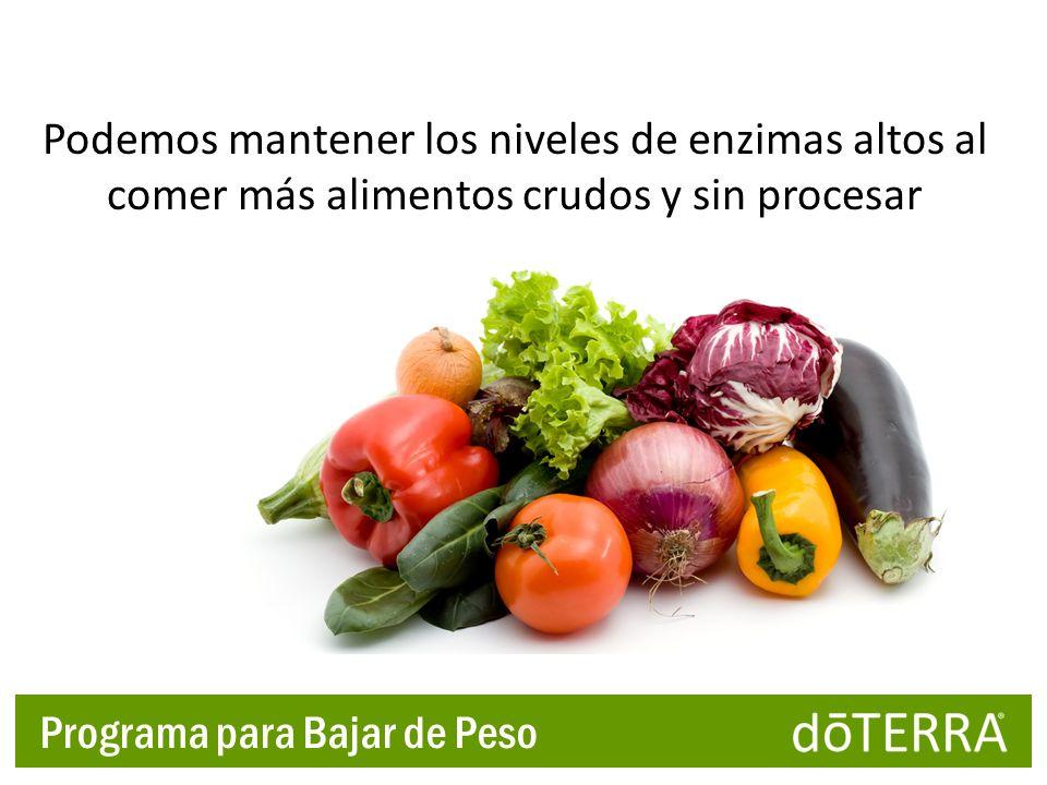 Podemos mantener los niveles de enzimas altos al comer más alimentos crudos y sin procesar Programa para Bajar de Peso