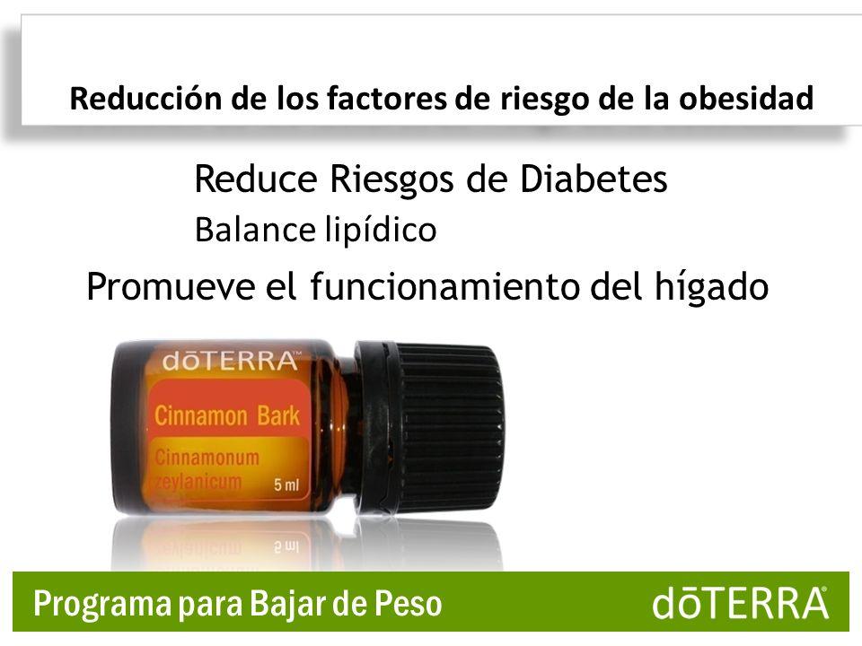 Promueve el funcionamiento del hígado Reducción de los factores de riesgo de la obesidad Balance lipídico Reduce Riesgos de Diabetes Programa para Baj