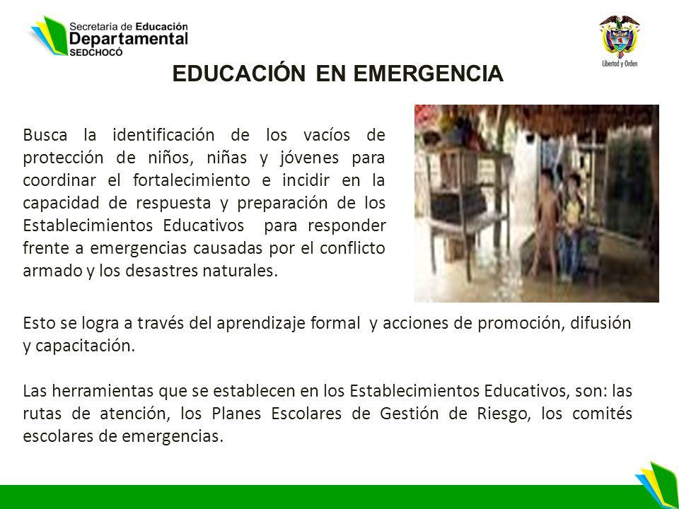 EDUCACIÓN EN EMERGENCIA Busca la identificación de los vacíos de protección de niños, niñas y jóvenes para coordinar el fortalecimiento e incidir en l