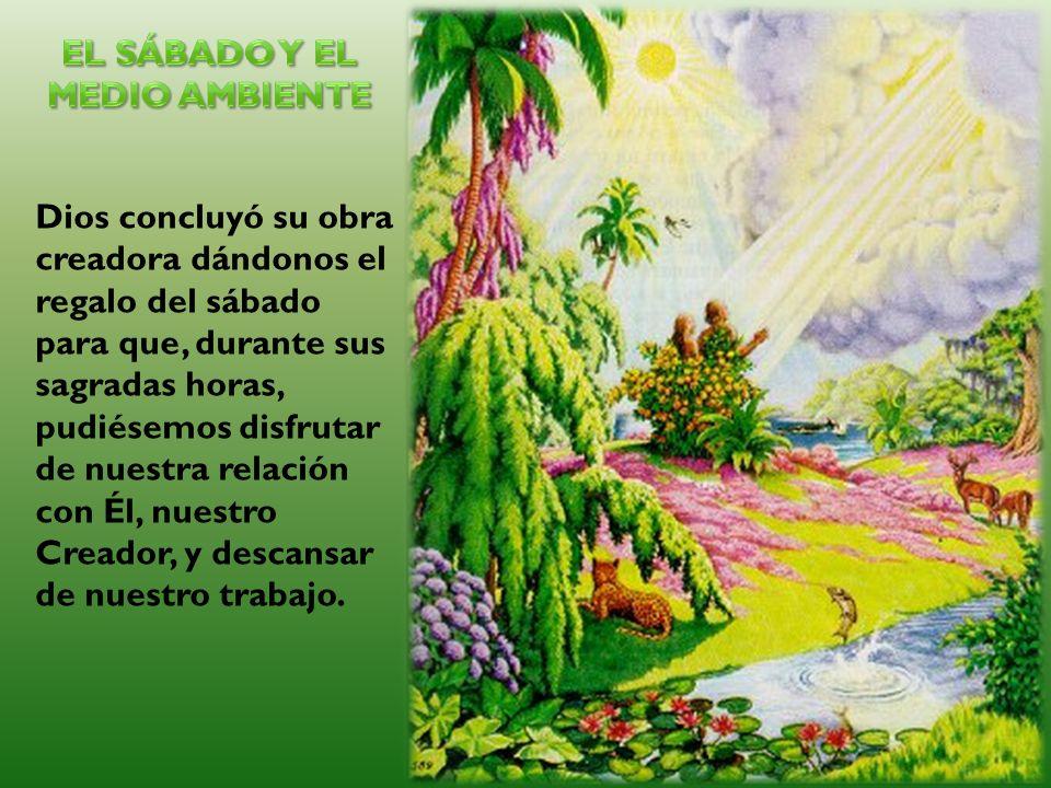 Dios concluyó su obra creadora dándonos el regalo del sábado para que, durante sus sagradas horas, pudiésemos disfrutar de nuestra relación con Él, nu