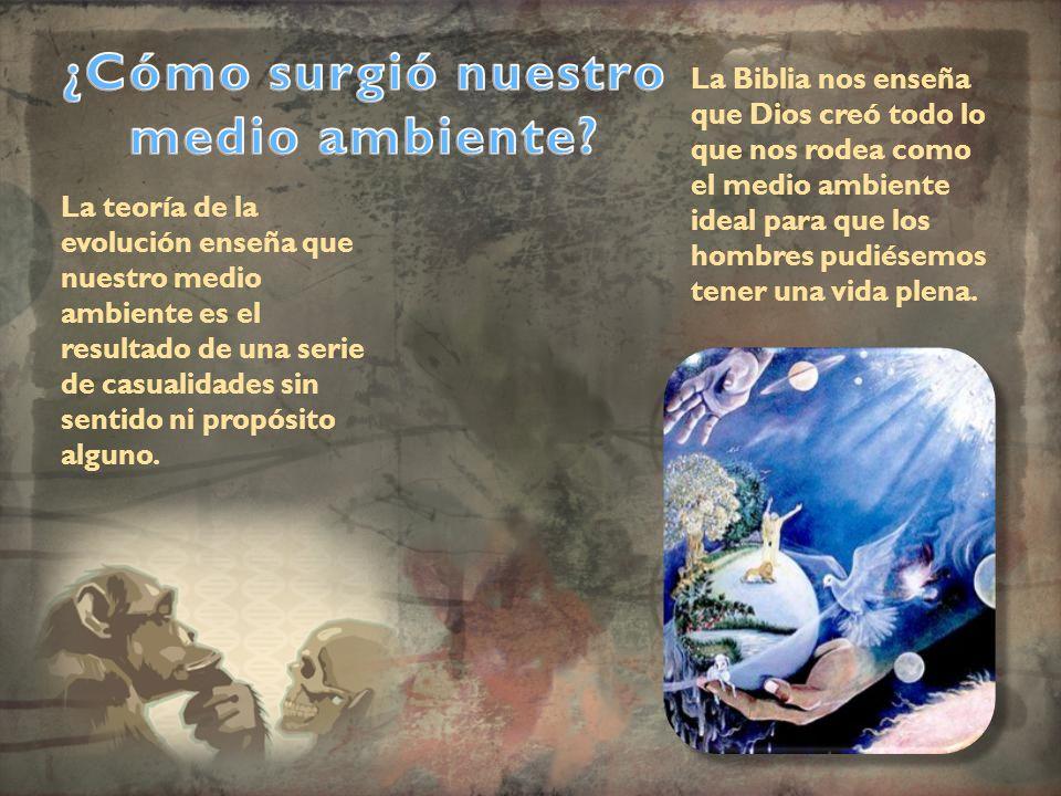 La teoría de la evolución enseña que nuestro medio ambiente es el resultado de una serie de casualidades sin sentido ni propósito alguno. La Biblia no