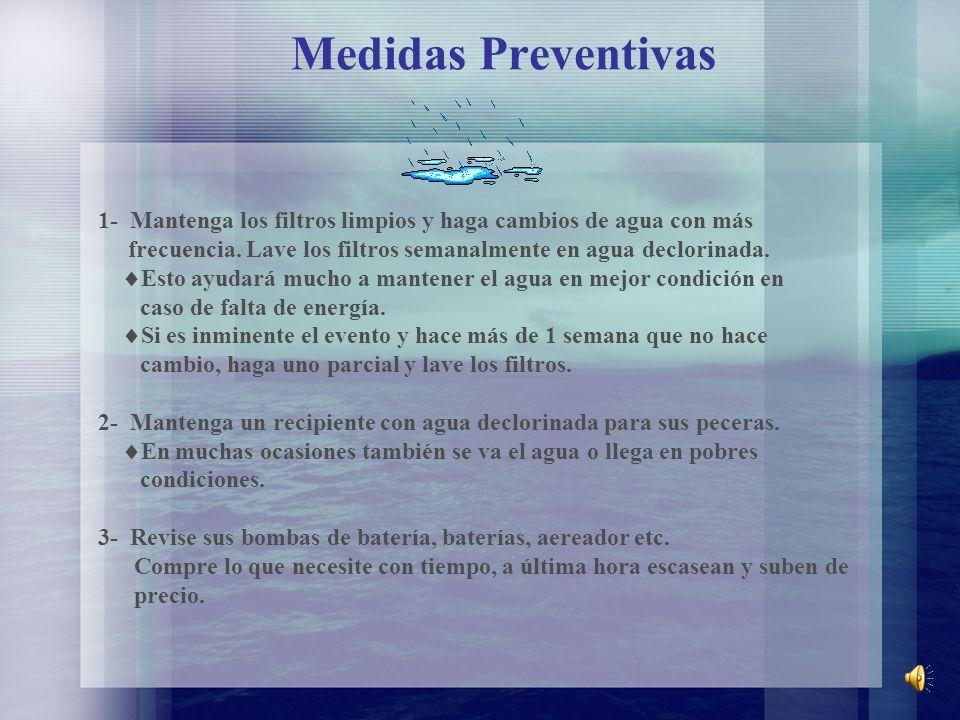 Medidas Preventivas 1- Mantenga los filtros limpios y haga cambios de agua con más frecuencia. Lave los filtros semanalmente en agua declorinada. Esto