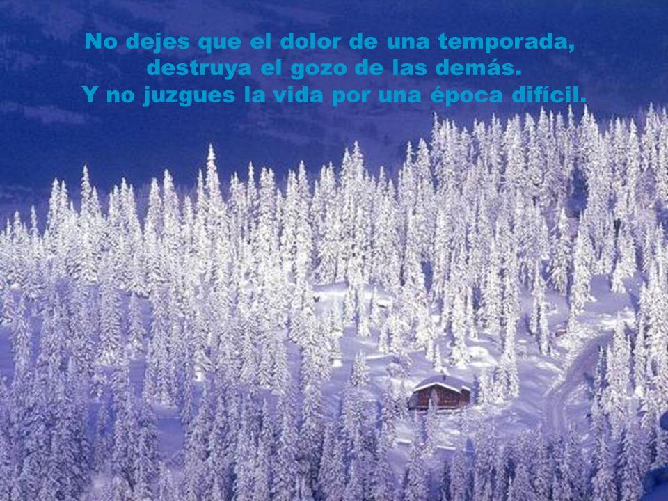 Si te das por vencido cuando es invierno, Perderás las oportunidades de la primavera, la belleza del verano, y las promesas del otoño.