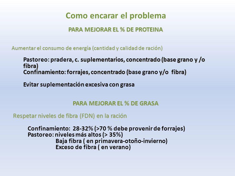 Como encarar el problema PARA MEJORAR EL % DE PROTEINA Aumentar el consumo de energía (cantidad y calidad de ración), c.