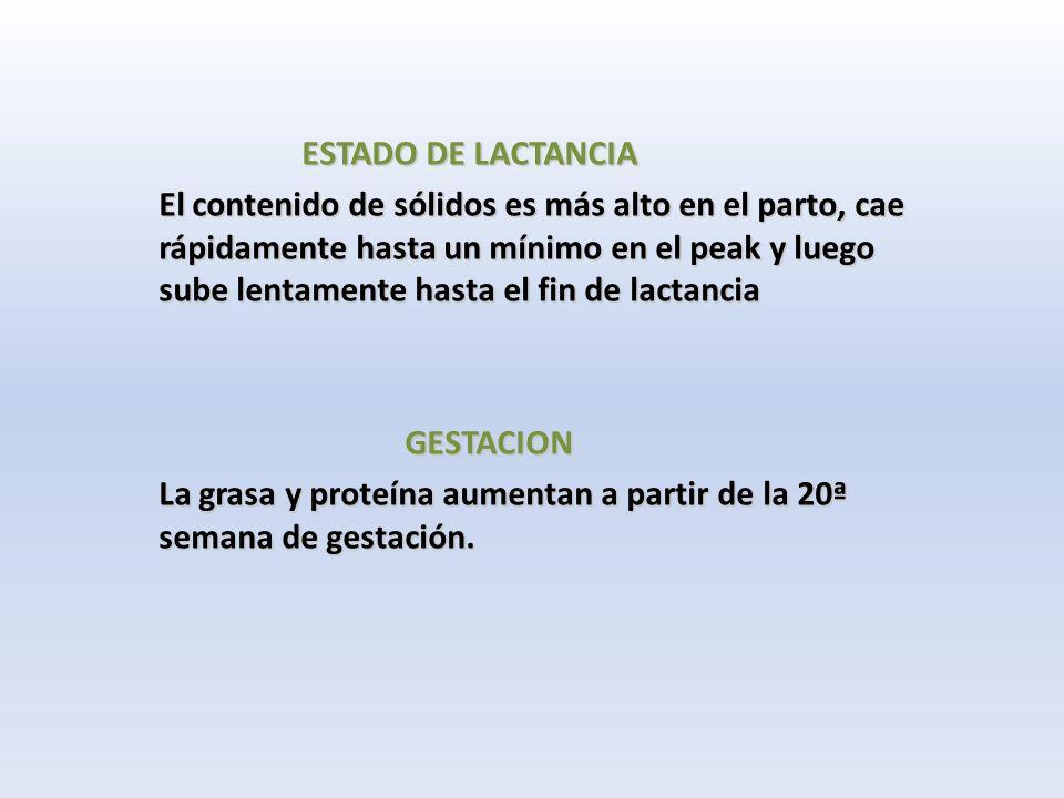ESTADO DE LACTANCIA ESTADO DE LACTANCIA El contenido de sólidos es más alto en el parto, cae rápidamente hasta un mínimo en el peak y luego sube lentamente hasta el fin de lactancia El contenido de sólidos es más alto en el parto, cae rápidamente hasta un mínimo en el peak y luego sube lentamente hasta el fin de lactancia GESTACION GESTACION La grasa y proteína aumentan a partir de la 20ª semana de gestación.
