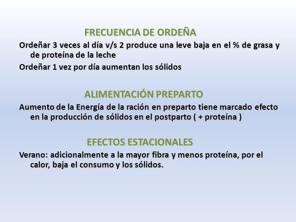 FRECUENCIA DE ORDEÑA FRECUENCIA DE ORDEÑA Ordeñar 3 veces al día v/s 2 produce una leve baja en el % de grasa y de proteína de la leche Ordeñar 1 vez por día aumentan los sólidos ALIMENTACIÓN PREPARTO ALIMENTACIÓN PREPARTO Aumento de la Energía de la ración en preparto tiene marcado efecto en la producción de sólidos en el postparto ( + proteína ) EFECTOS ESTACIONALES EFECTOS ESTACIONALES Verano: adicionalmente a la mayor fibra y menos proteína, por el calor, baja el consumo y los sólidos.