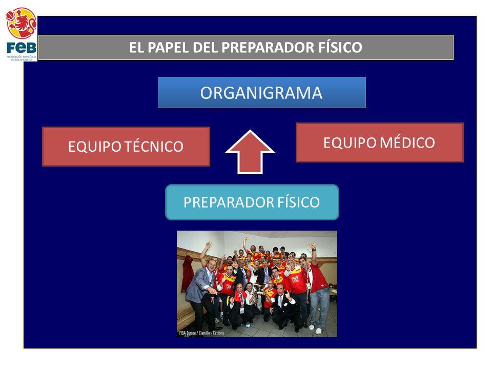EL PAPEL DEL PREPARADOR FÍSICO EQUIPO TÉCNICO ORGANIGRAMA PREPARADOR FÍSICO EQUIPO MÉDICO