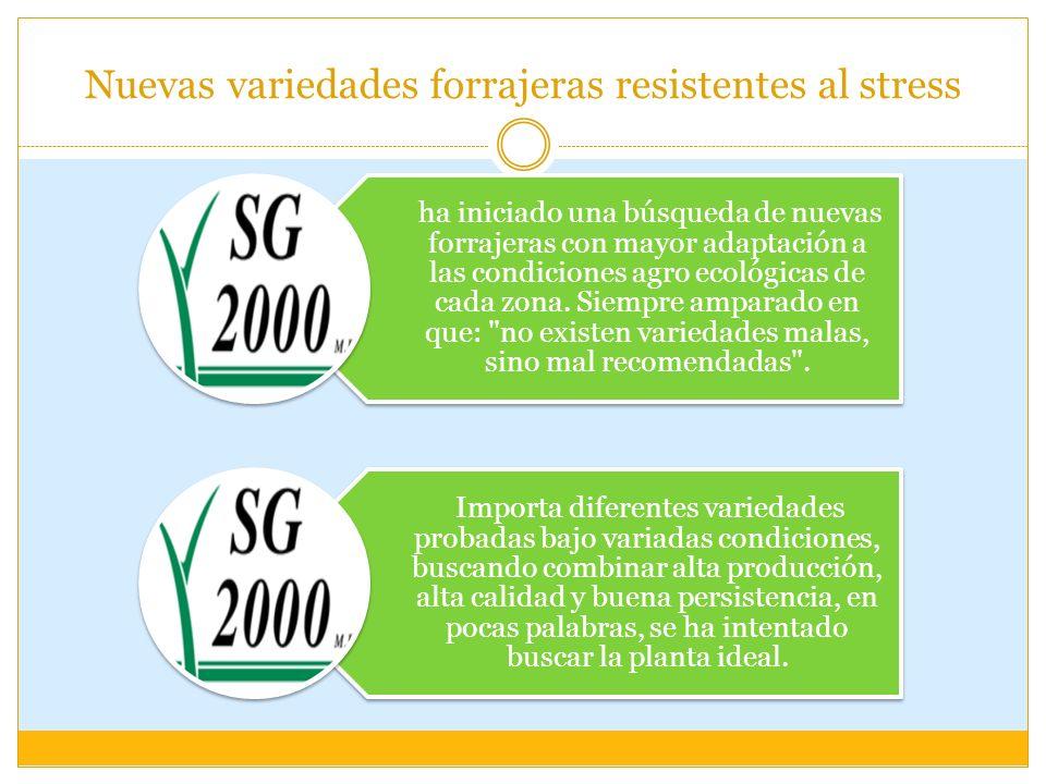 Nuevas variedades forrajeras resistentes al stress ha iniciado una búsqueda de nuevas forrajeras con mayor adaptación a las condiciones agro ecológica
