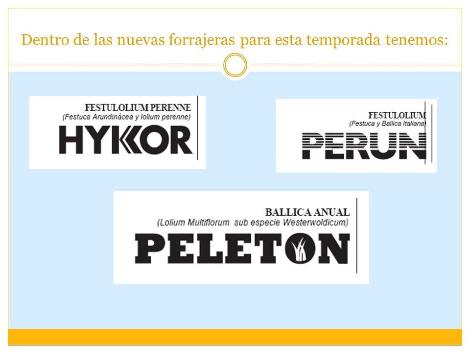 Nuevas Forrajeras PELETON - Ballica anual de procedencia danesa.