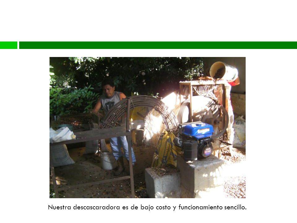 Proceso Nuestra descascaradora es de bajo costo y funcionamiento sencillo.