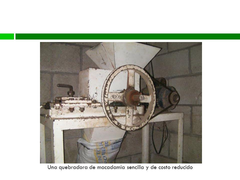 Proceso Una quebradora de macadamia sencilla y de costo reducido