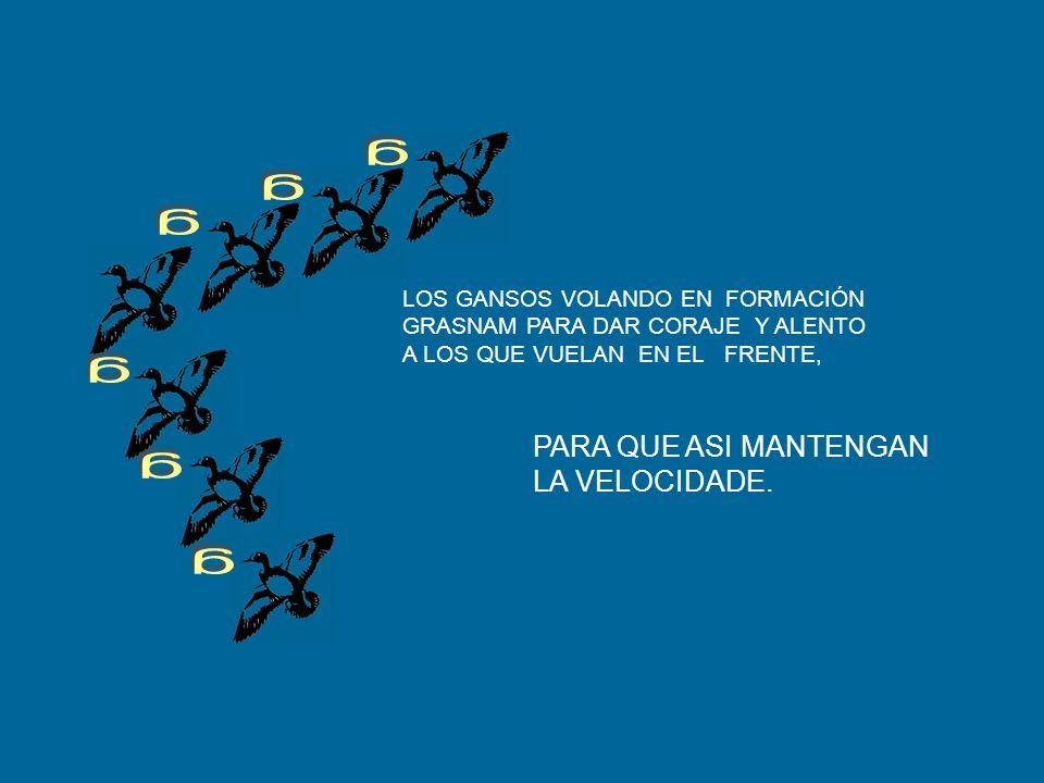 LECCIÓN 3: COMPARTIR EL LIDERAZGO.. RESPETARMOS MUTUAMENTE TODO EL TIEMPO DIVIDIR LOS PROBLEMAS Y LOS OS TRABAJOS MAS DIFICILES. REUNIR HABILIDADES Y