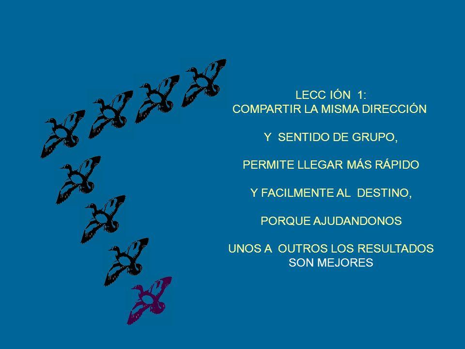 LECC IÓN 1: COMPARTIR LA MISMA DIRECCIÓN Y SENTIDO DE GRUPO, PERMITE LLEGAR MÁS RÁPIDO Y FACILMENTE AL DESTINO, PORQUE AJUDANDONOS UNOS A OUTROS LOS RESULTADOS SON MEJORES
