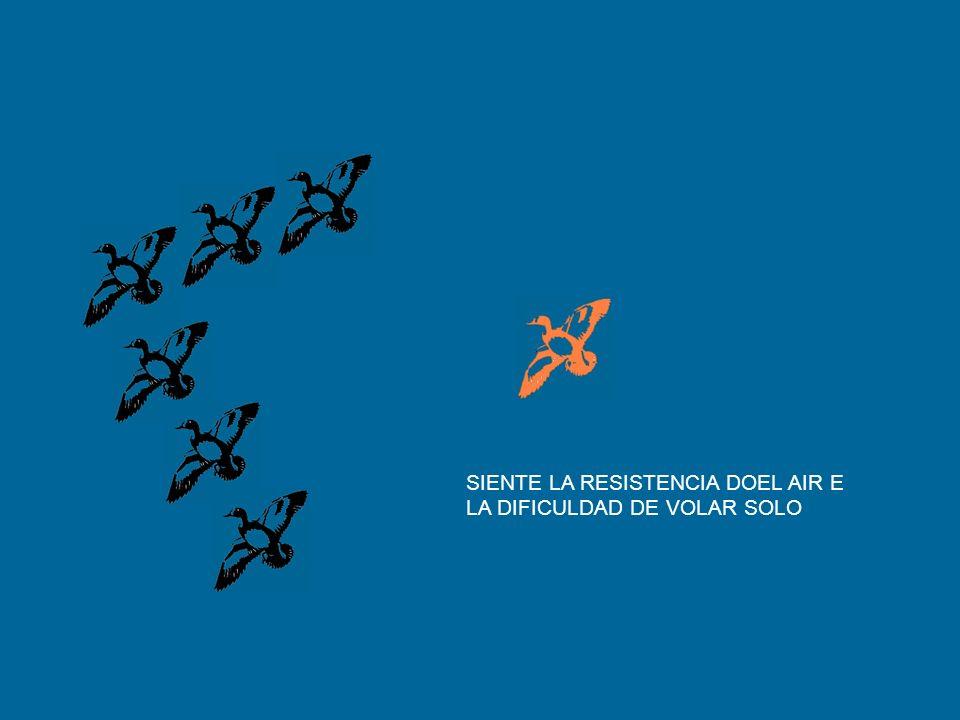 SIENTE LA RESISTENCIA DOEL AIR E LA DIFICULDAD DE VOLAR SOLO