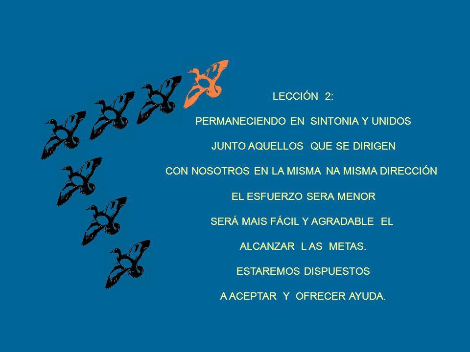 LECCIÓN 2: PERMANECIENDO EN SINTONIA Y UNIDOS JUNTO AQUELLOS QUE SE DIRIGEN CON NOSOTROS EN LA MISMA NA MISMA DIRECCIÓN EL ESFUERZO SERA MENOR SERÁ MAIS FÁCIL Y AGRADABLE EL ALCANZAR L AS METAS.