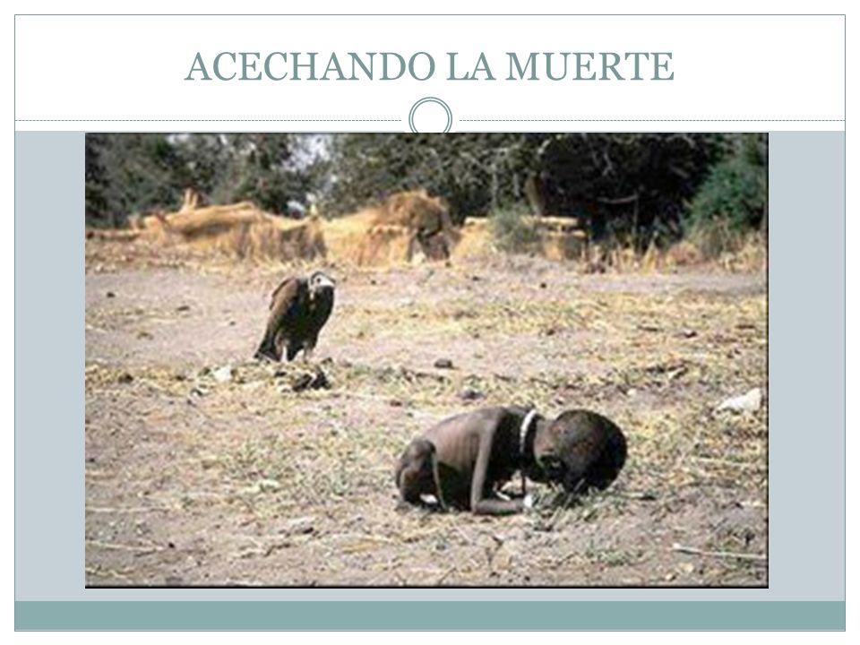 ACECHANDO LA MUERTE