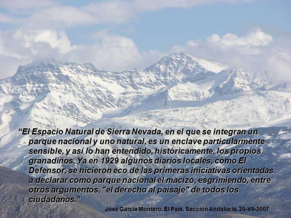 El Espacio Natural de Sierra Nevada, en el que se integran un parque nacional y uno natural, es un enclave particularmente sensible, y así lo han ente