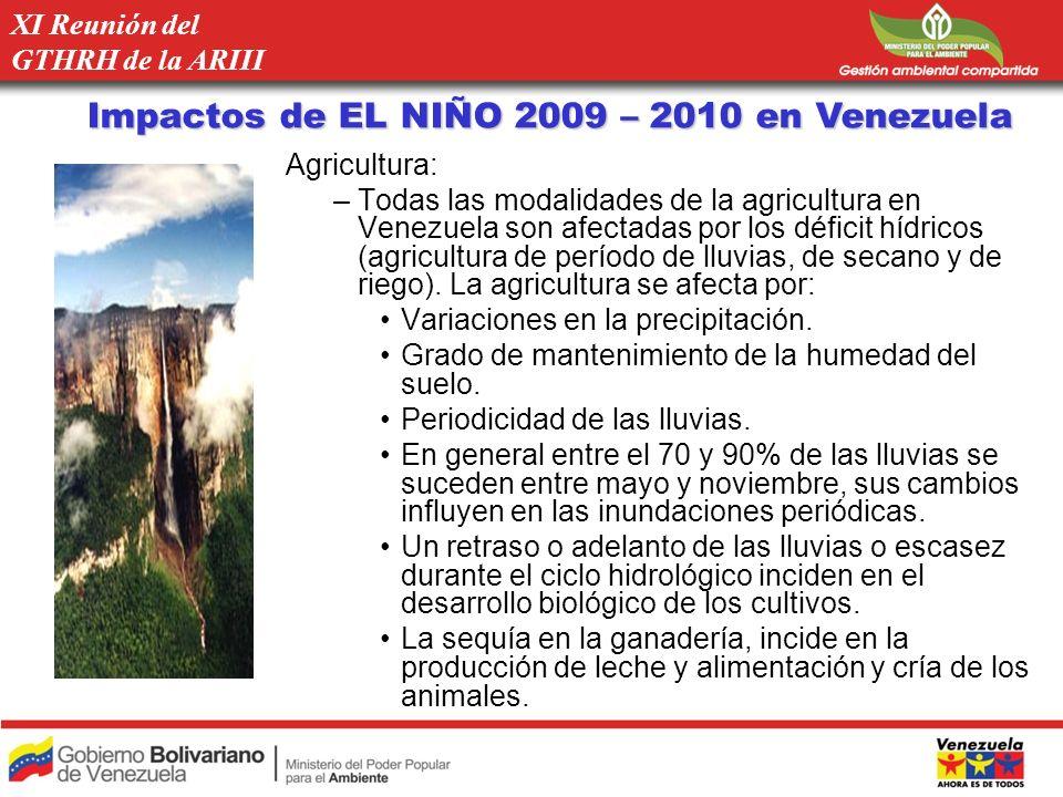 Impactos de EL NIÑO 2009 – 2010 en Venezuela Agricultura: –Todas las modalidades de la agricultura en Venezuela son afectadas por los déficit hídricos