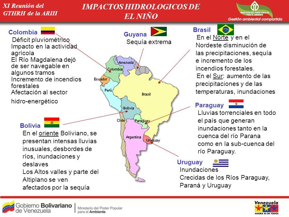 XI Reunión del GTHRH de la ARIII Paraguay -Lluvias torrenciales en todo el país que generan inundaciones tanto en la cuenca del río Parana como en la