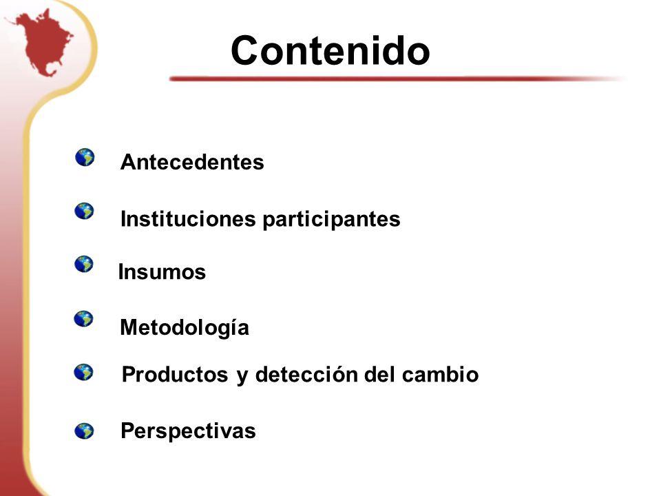 Metodología Insumos Instituciones participantes Productos y detección del cambio Antecedentes Contenido Perspectivas