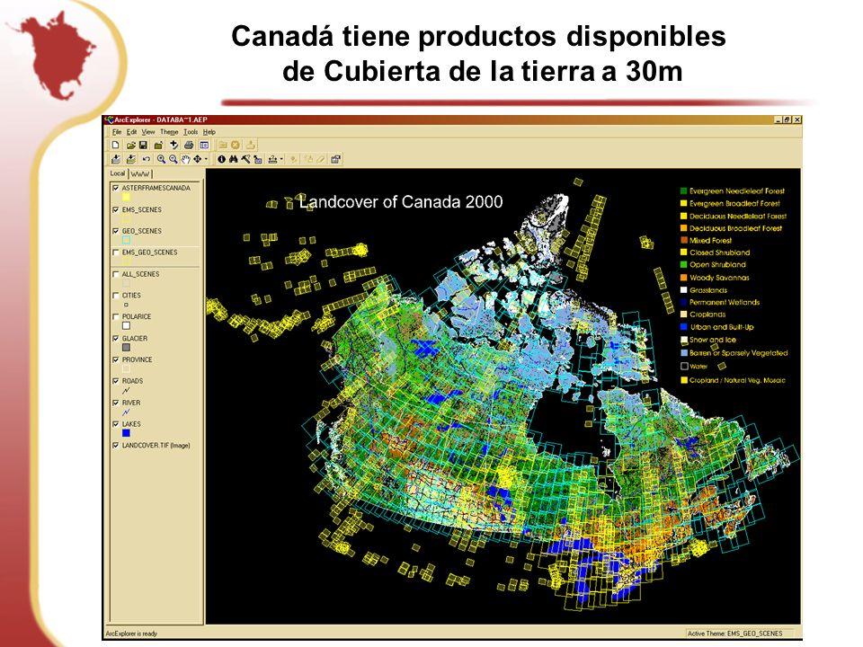 Canadá tiene productos disponibles de Cubierta de la tierra a 30m