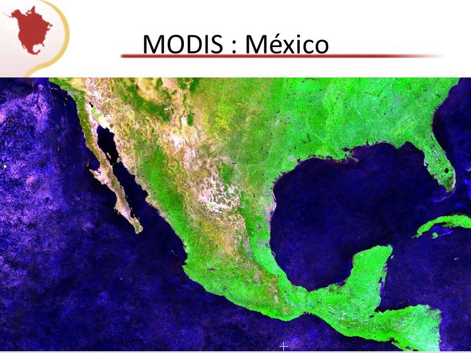 MODIS : México
