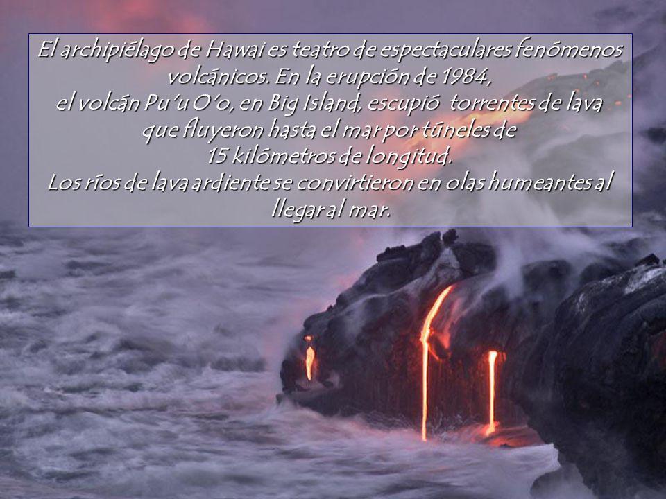 Algunas fotos y textos son adaptados de LInternaute.com