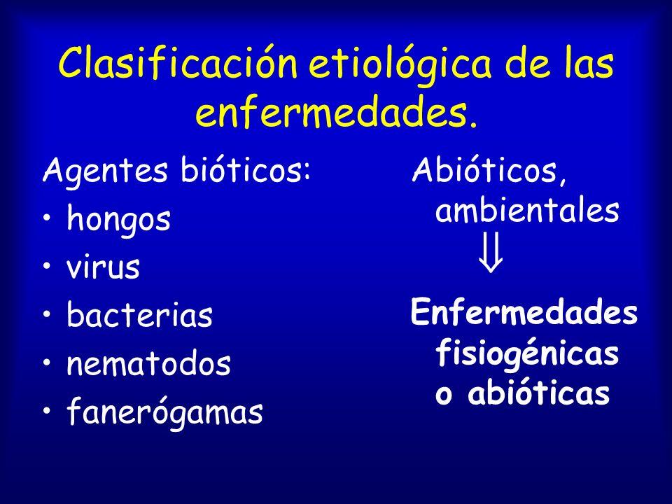 ¿ .Niveles de parasitismo.
