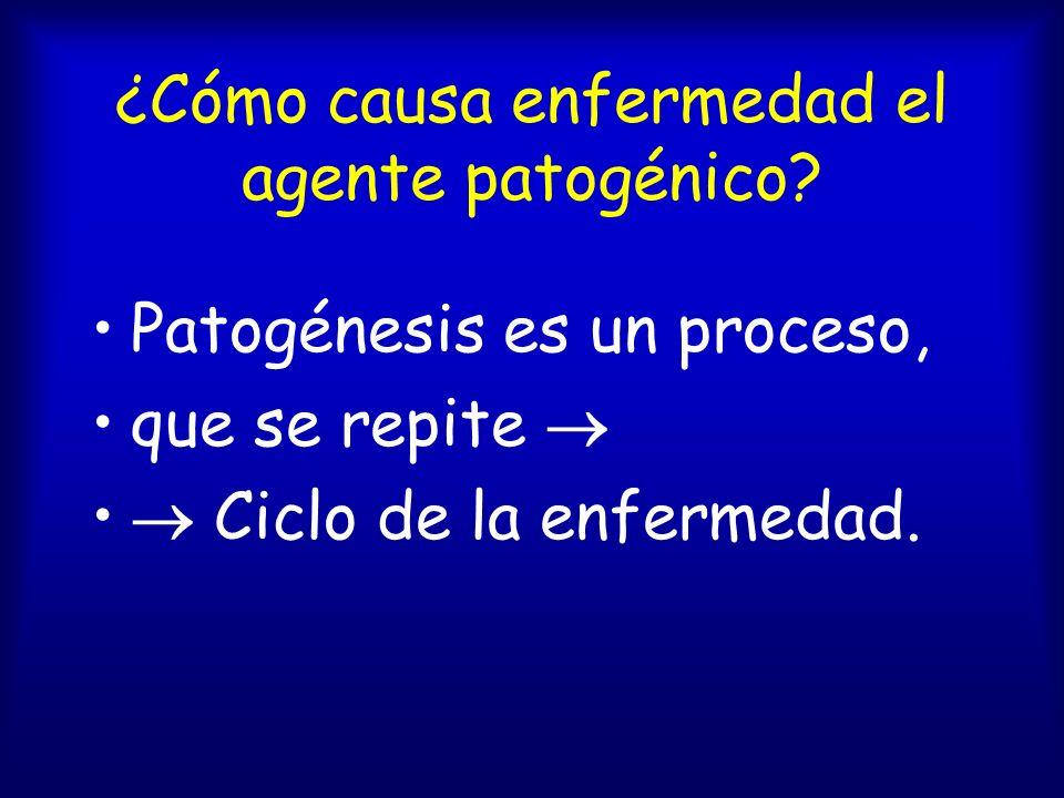 Agente patógeno es...¿Un parásito. ¿Un ser vivo que causa enfermedad a otro.