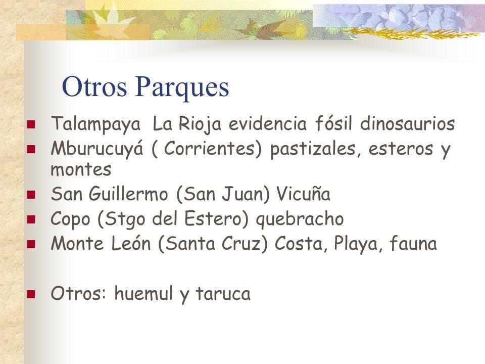 Otros Parques Talampaya La Rioja evidencia fósil dinosaurios Mburucuyá ( Corrientes) pastizales, esteros y montes San Guillermo (San Juan) Vicuña Copo