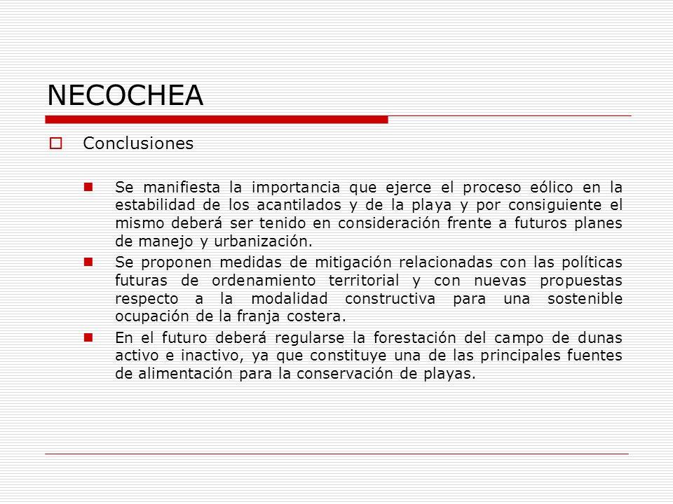 NECOCHEA Conclusiones Se manifiesta la importancia que ejerce el proceso eólico en la estabilidad de los acantilados y de la playa y por consiguiente