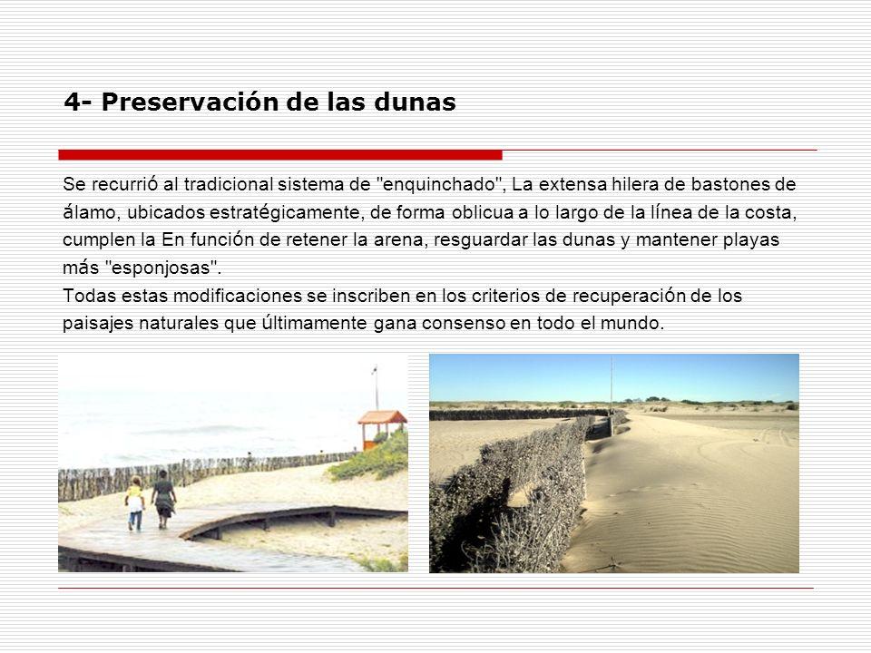 4- Preservación de las dunas Se recurri ó al tradicional sistema de