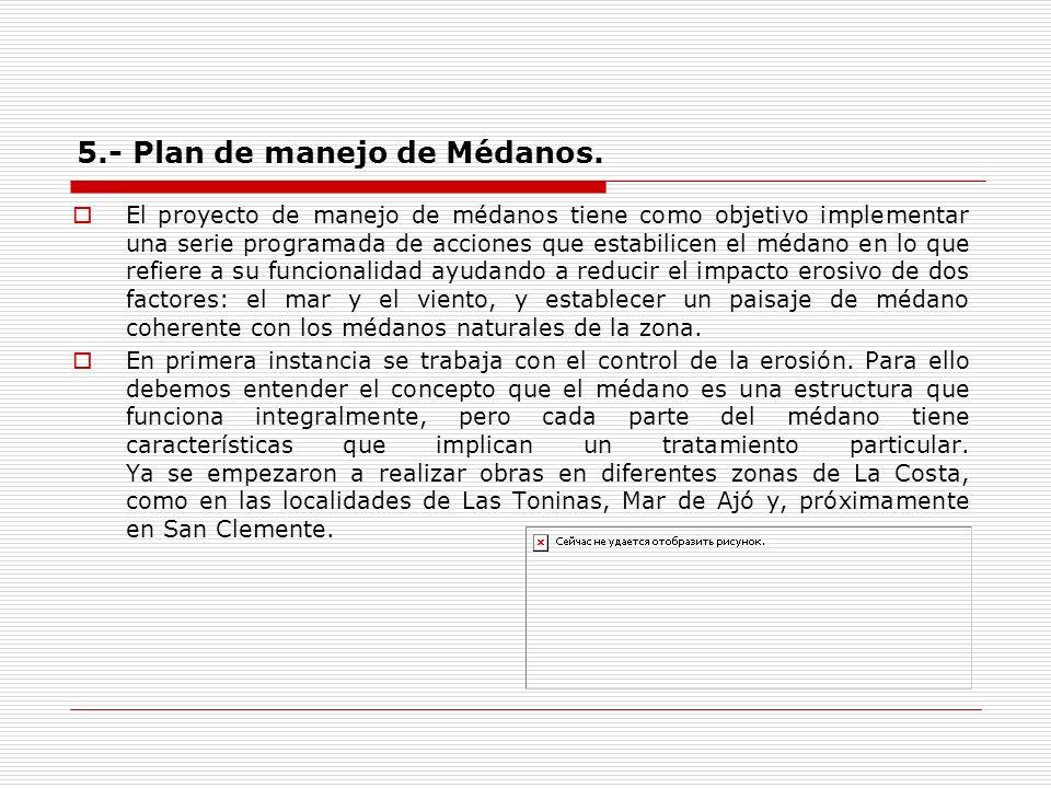 5.- Plan de manejo de Médanos. El proyecto de manejo de médanos tiene como objetivo implementar una serie programada de acciones que estabilicen el mé