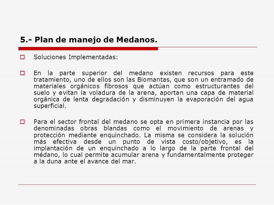 5.- Plan de manejo de Medanos. Soluciones Implementadas: En la parte superior del medano existen recursos para este tratamiento, uno de ellos son las