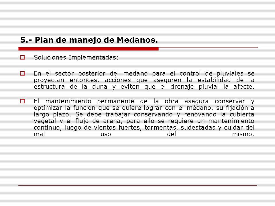 5.- Plan de manejo de Medanos. Soluciones Implementadas: En el sector posterior del medano para el control de pluviales se proyectan entonces, accione